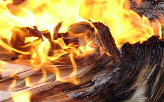Burning Your List – Mobile, Email, Twitter or Facebook