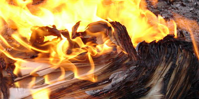 burning your list mobile email social media