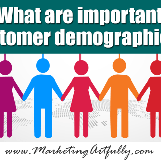 What are important customer demographics? (updated April 2017)