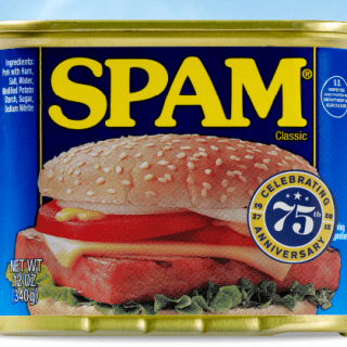 Spam, Spam, Spam, Spam – How To Spot A Spammer On Pinterest!
