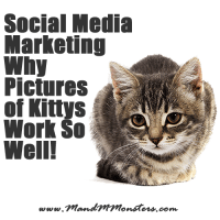 Social Media Marketing - Why Pictures of Kittys Work So Well
