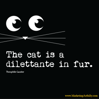 The cat is a dilettante in fur