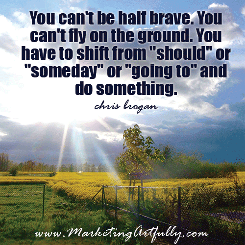 You can't be half brave, chris brogan