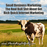 Small Business Marketing: The Real Bull Shit About Get Rich Quick Internet Marketing