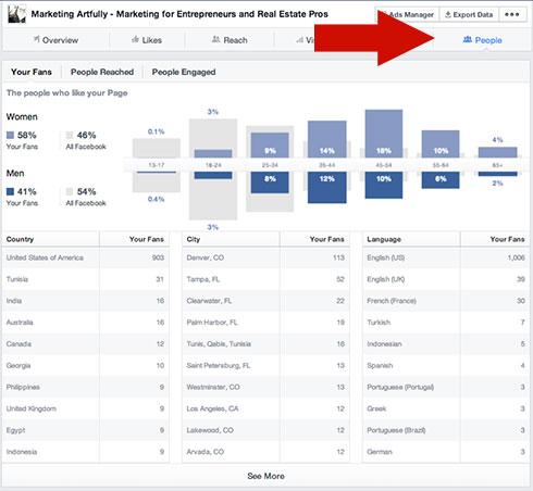 Customer Demographics From Facebook
