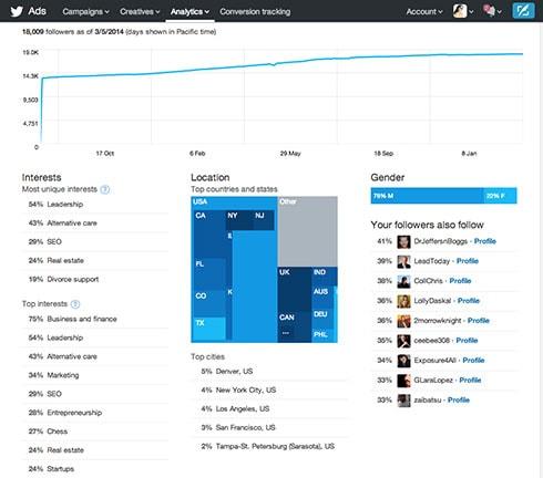 Customer Demographics Twitter