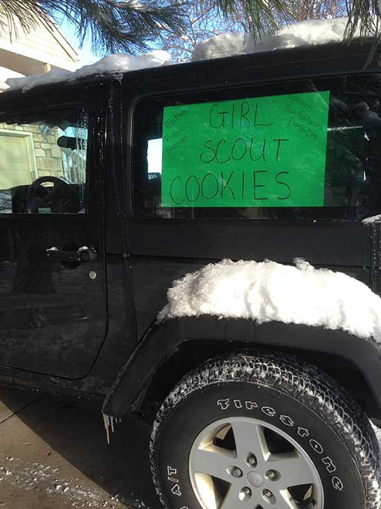Girl Scout Cookie Car Signs
