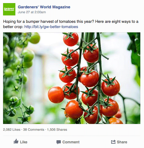 Popular Facebook Post