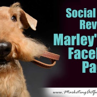 Social Media Review – Marley's Mutts Facebook Page