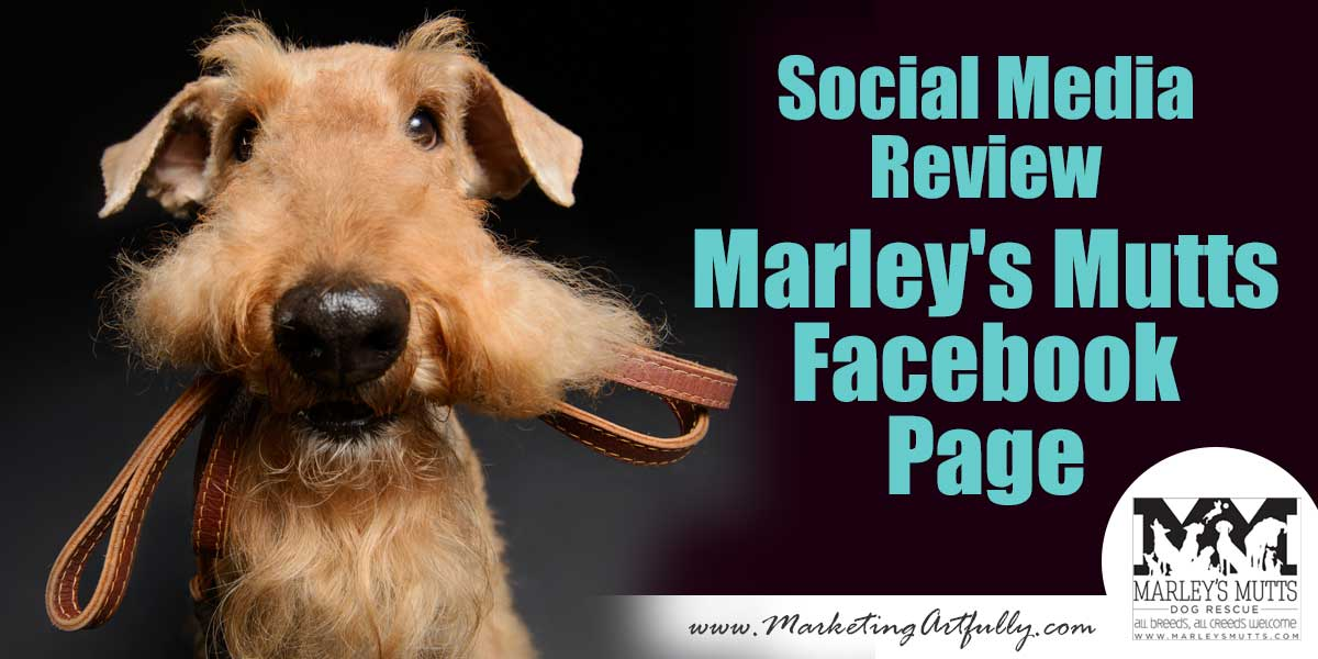 Social Media Review - Marleys Mutts Facebook Page