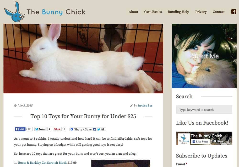 The Bunny Chick - Niche Website