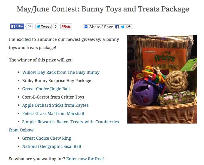 Toy Treats Package - Bunny Niche