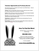Non Profit Volunteer Flyer