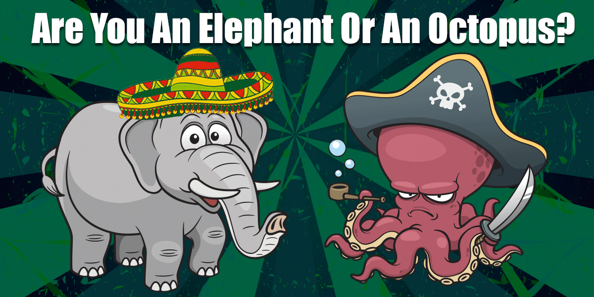 Are You An Elephant Or An Octopus | Content Marketing