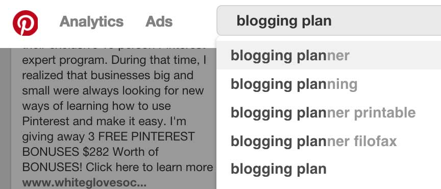 Pinterest Search for Blogging Planner