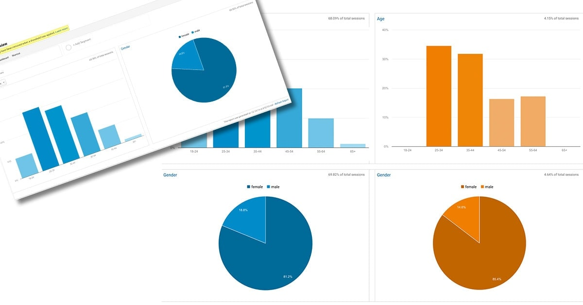 Google Analytics Demographics Overview - All Social Segment