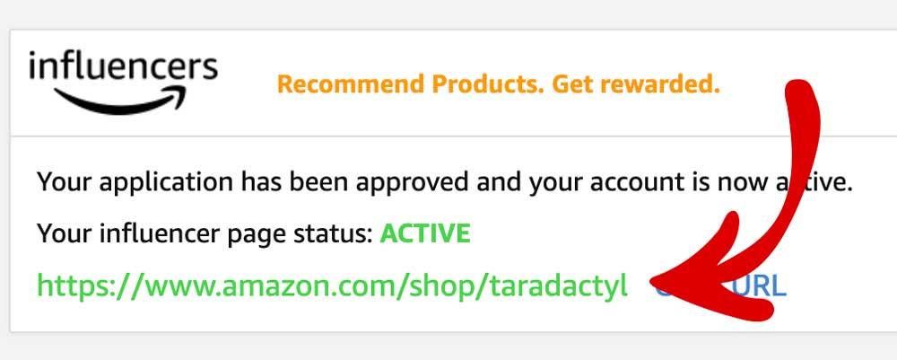 Amazon Store Link