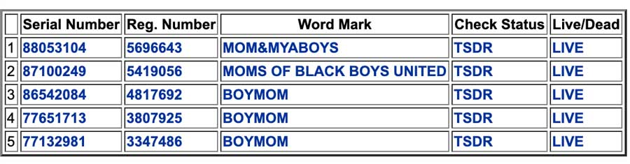 Boymom Trademark Search Result